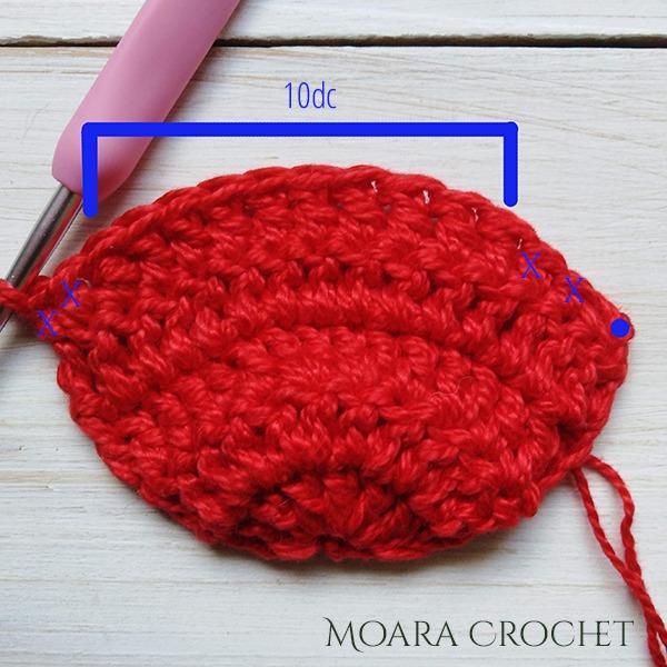 Crochet Petal Row.5