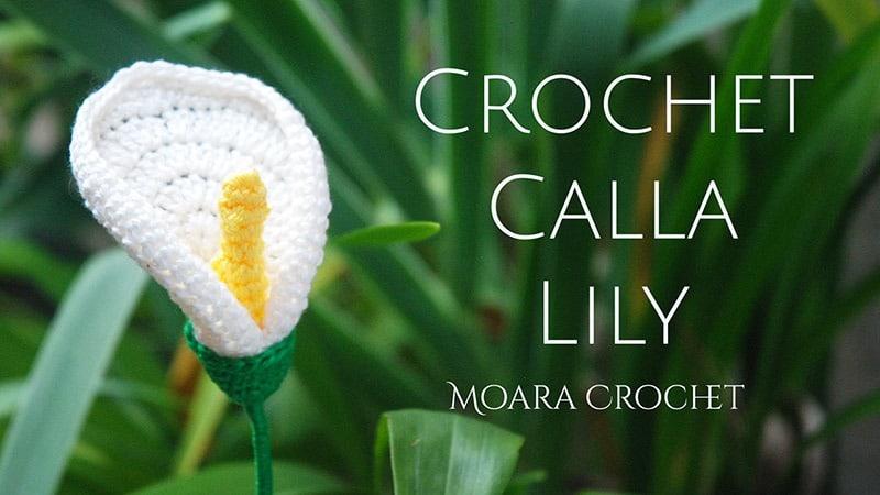 Calla Lily Free Pattern - Moara Crochet