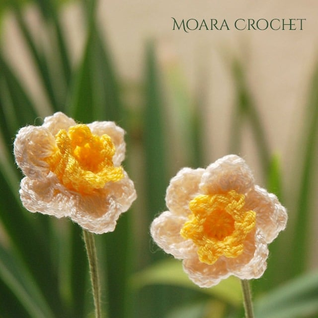 Free Crochet Flower Patterns - Daffodil - Moara Crochet