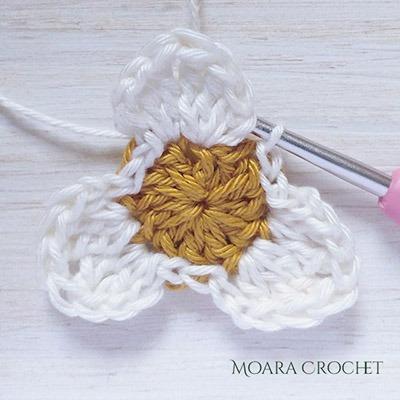 Row 2a - Moara Crochet