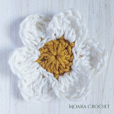 Row 2c - Moara Crochet