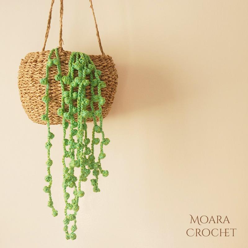 Crochet Succulent Pattern Moara Crochet